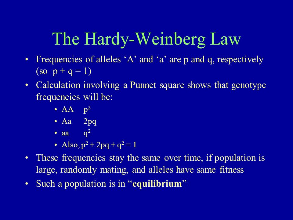 The Hardy-Weinberg Law