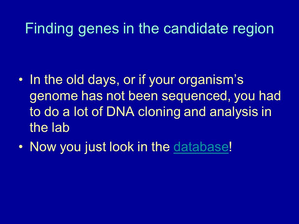 Finding genes in the candidate region
