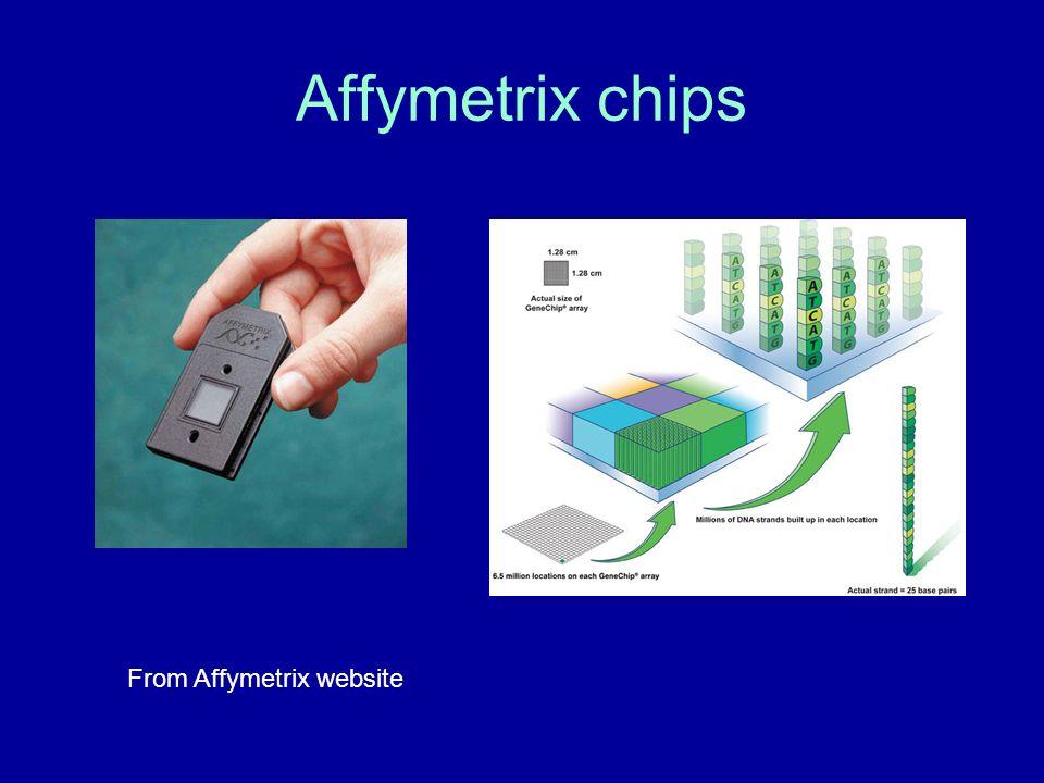 Affymetrix chips From Affymetrix website