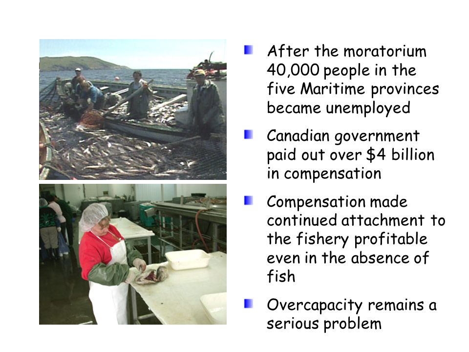 After the moratorium 40,000 people in the five Maritime provinces became unemployed