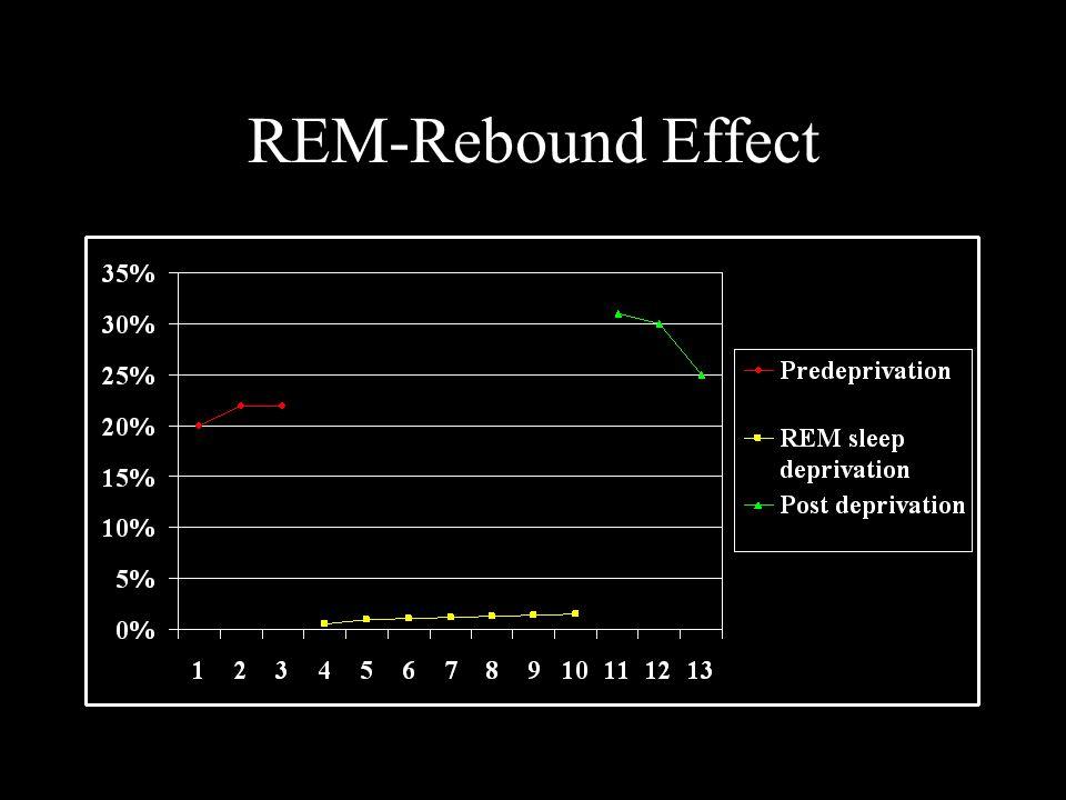 REM-Rebound Effect