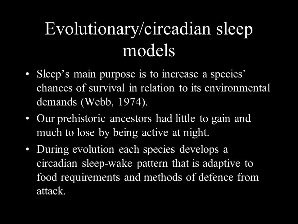 Evolutionary/circadian sleep models