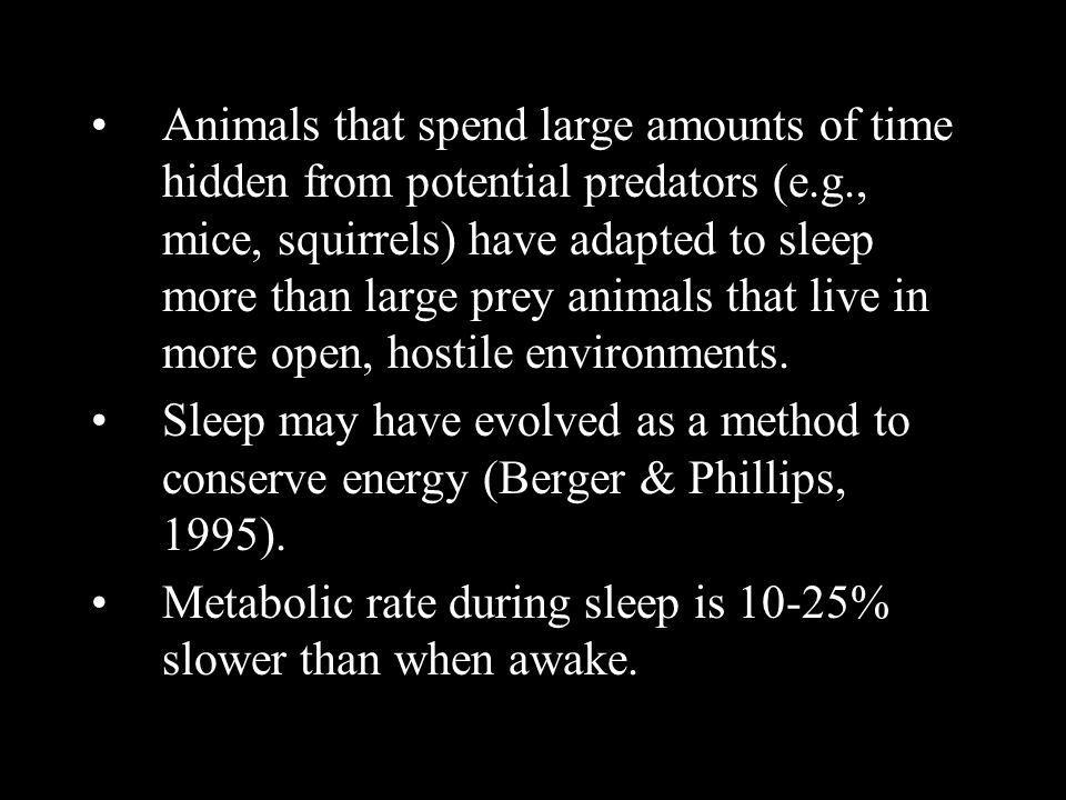 Animals that spend large amounts of time hidden from potential predators (e.g., mice, squirrels) have adapted to sleep more than large prey animals that live in more open, hostile environments.