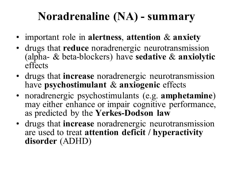 Noradrenaline (NA) - summary