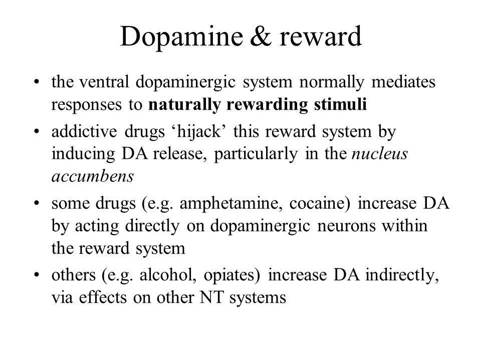 Dopamine & reward the ventral dopaminergic system normally mediates responses to naturally rewarding stimuli.