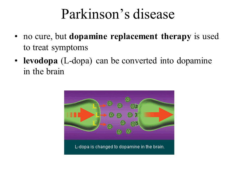 Parkinson's disease no cure, but dopamine replacement therapy is used to treat symptoms.
