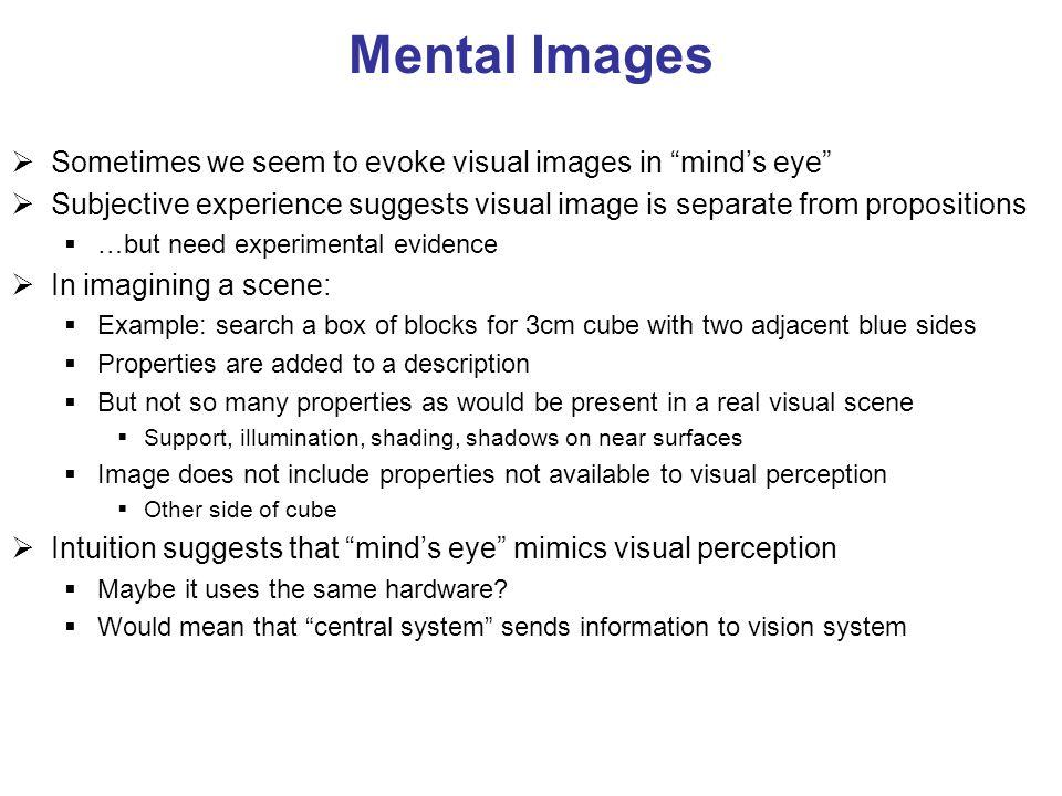 Mental Images Sometimes we seem to evoke visual images in mind's eye