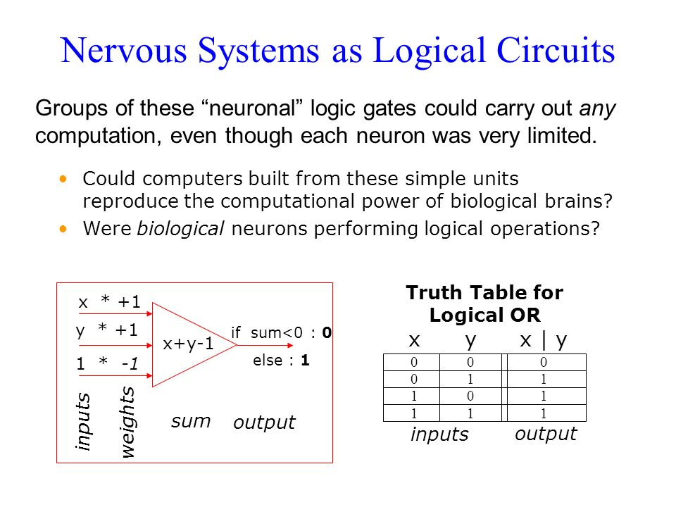 Nervous Systems as Logical Circuits