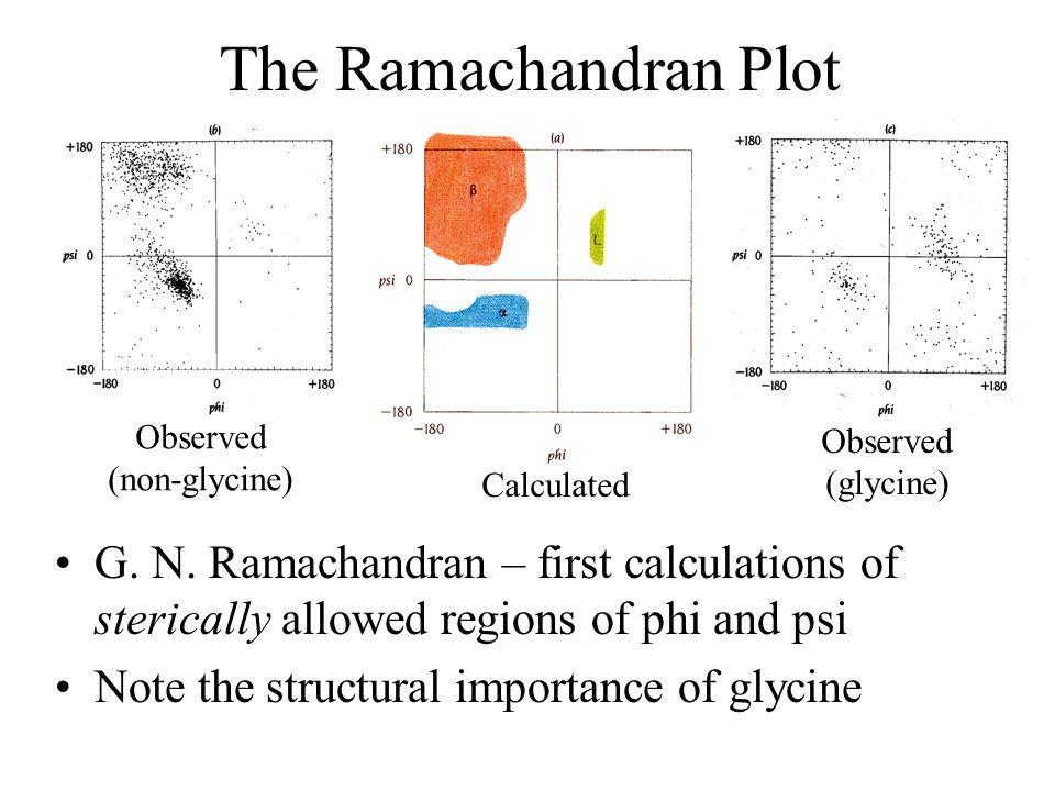 The Ramachandran Plot Observed. (non-glycine) Observed. (glycine) Calculated.
