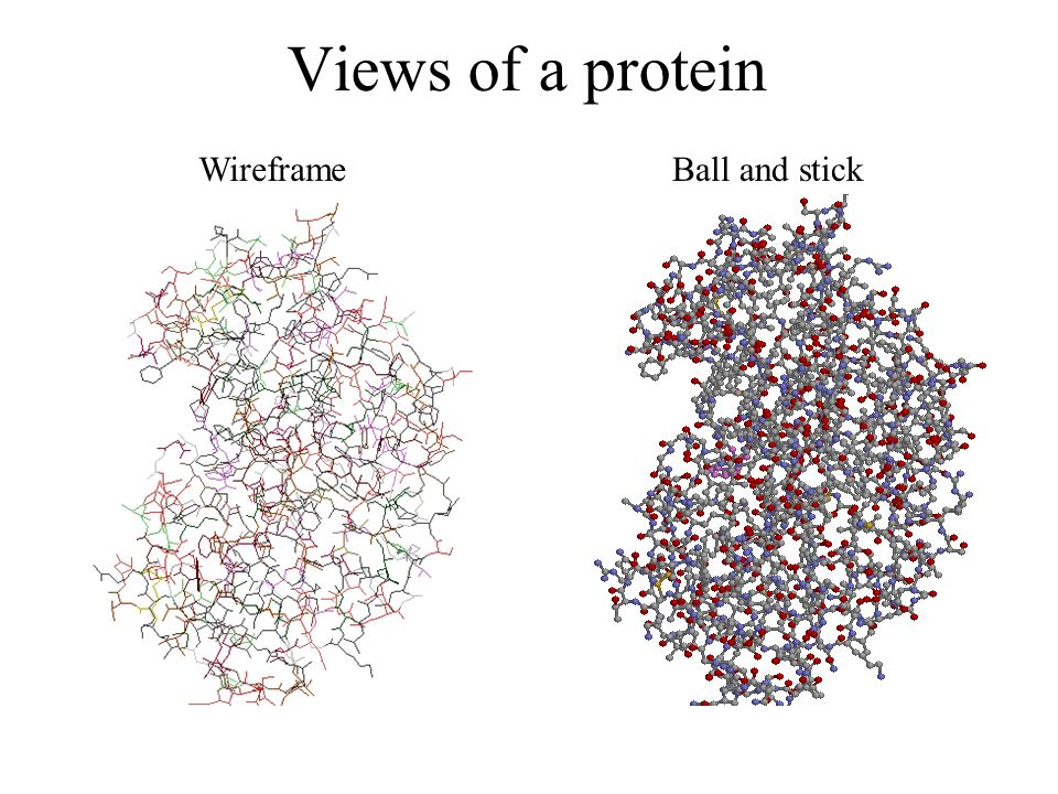 Views of a protein Wireframe Ball and stick