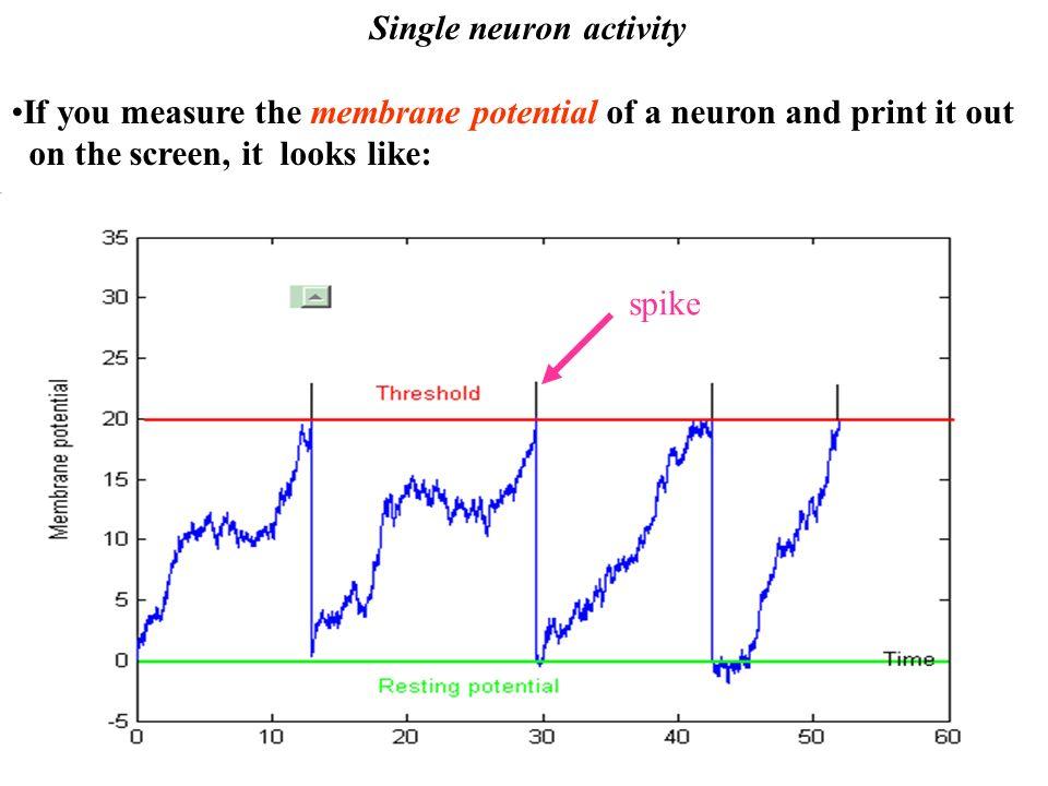 Single neuron activity