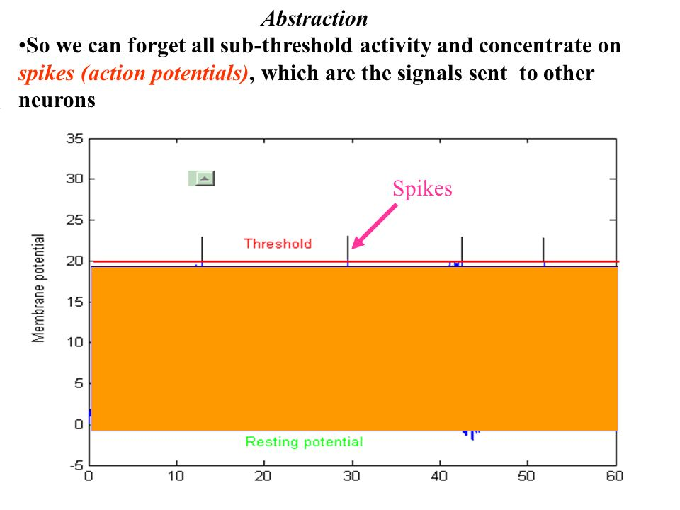 Abstraction So we can forget all sub-threshold activity and concentrate on spikes (action potentials), which are the signals sent to other neurons.
