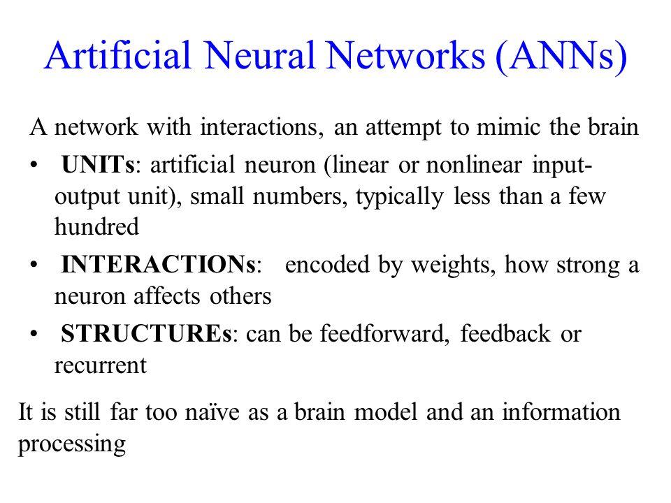 Artificial Neural Networks (ANNs)