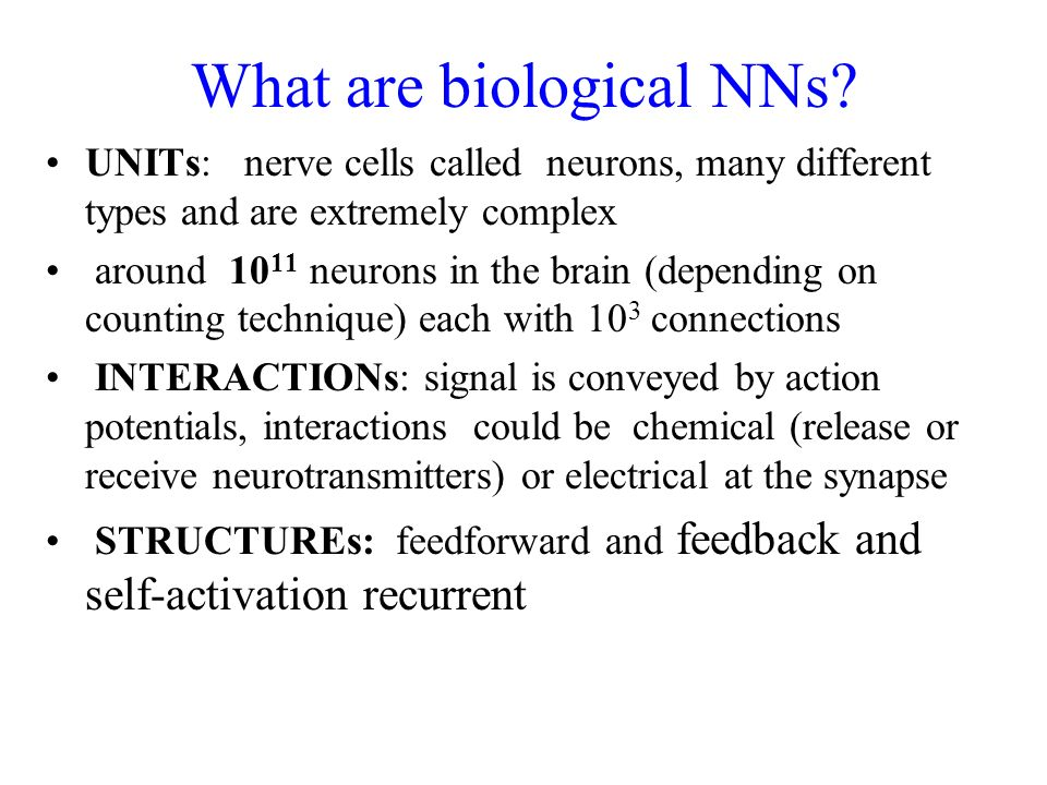 What are biological NNs