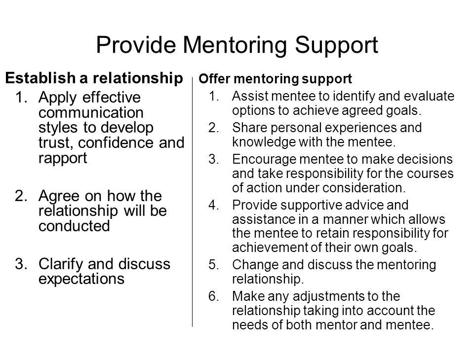 Provide Mentoring Support