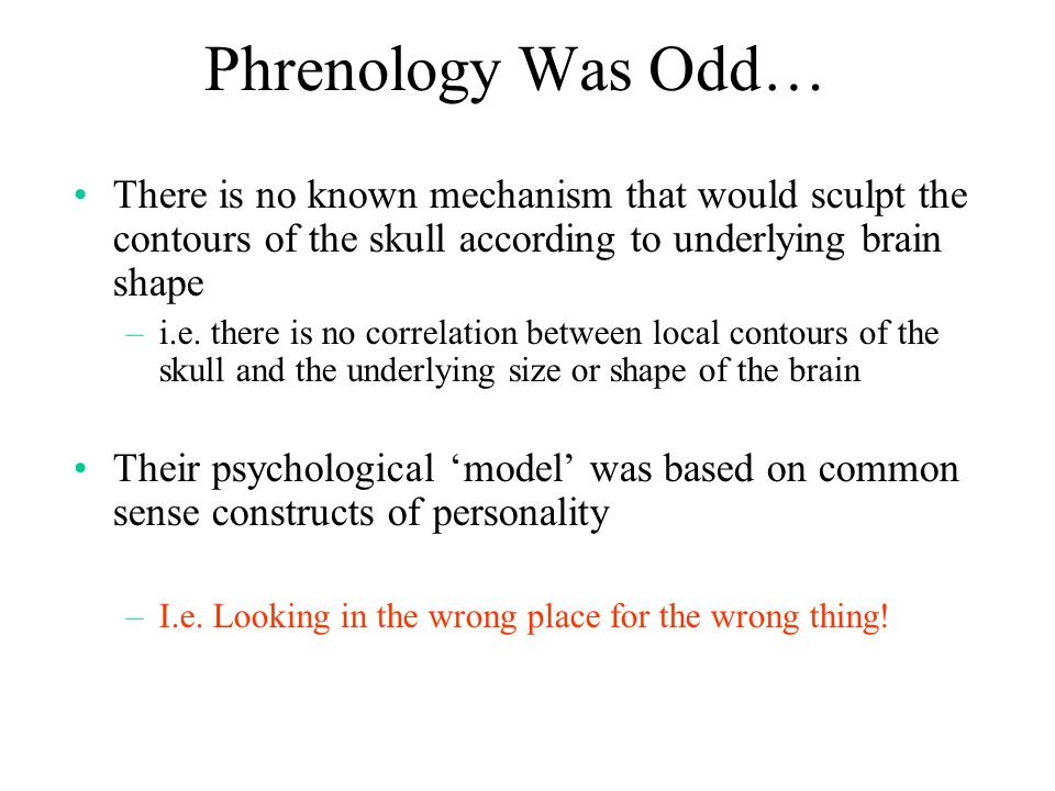 Phrenology Was Odd… There is no known mechanism that would sculpt the contours of the skull according to underlying brain shape.