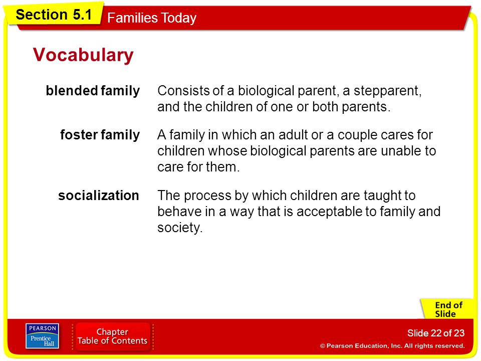 Vocabulary blended family