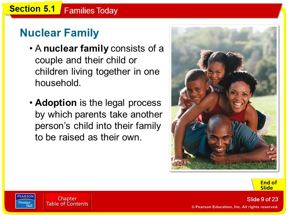 Nuclear Family A nuclear family consists of a couple and their child or children living together in one household.