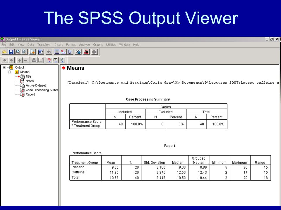 The SPSS Output Viewer