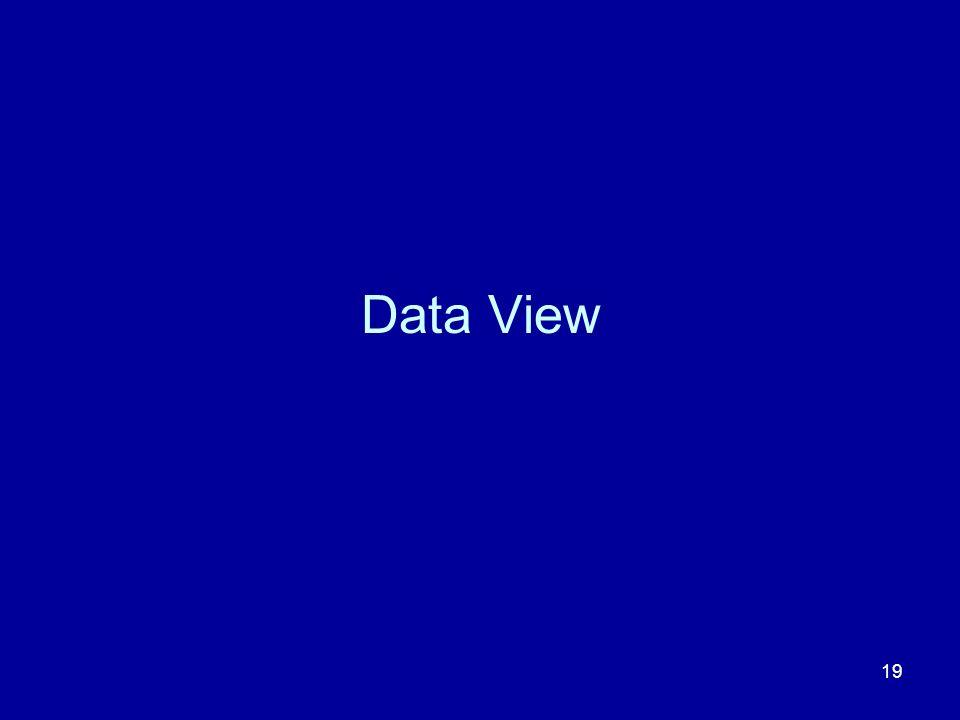 Data View