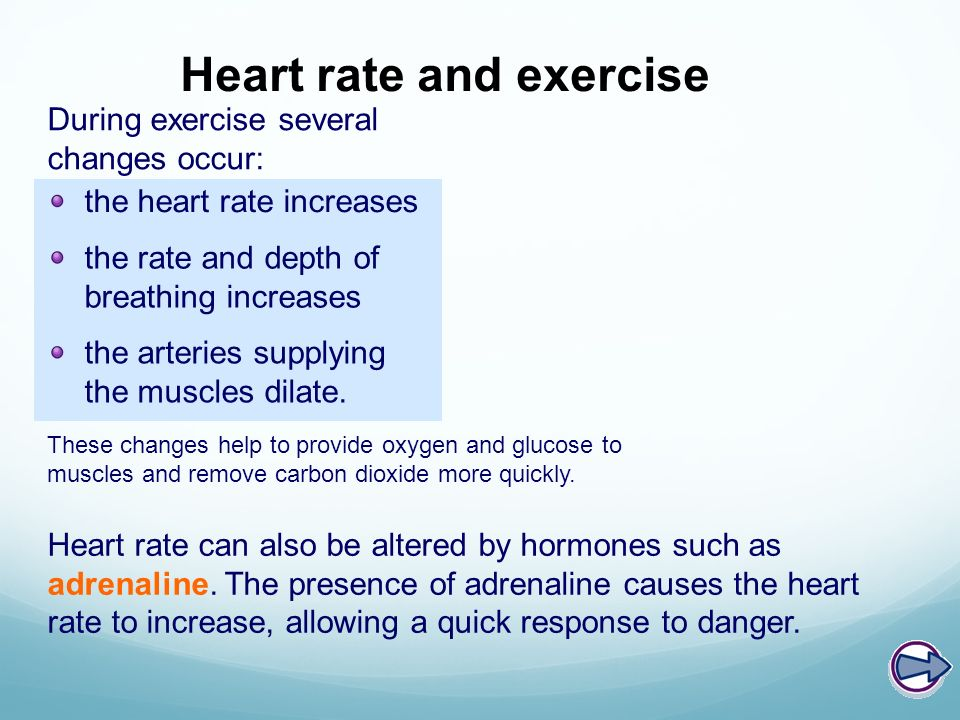 Viagra increase heart rate