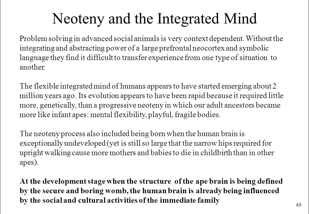 Neoteny and the Integrated Mind