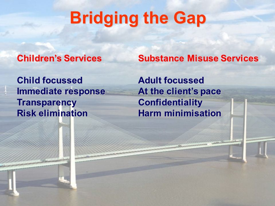 Bridging the Gap Children's Services Child focussed Immediate response