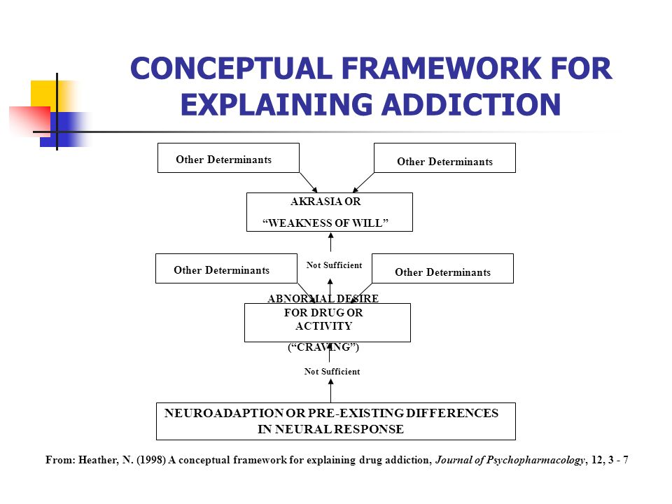 CONCEPTUAL FRAMEWORK FOR EXPLAINING ADDICTION