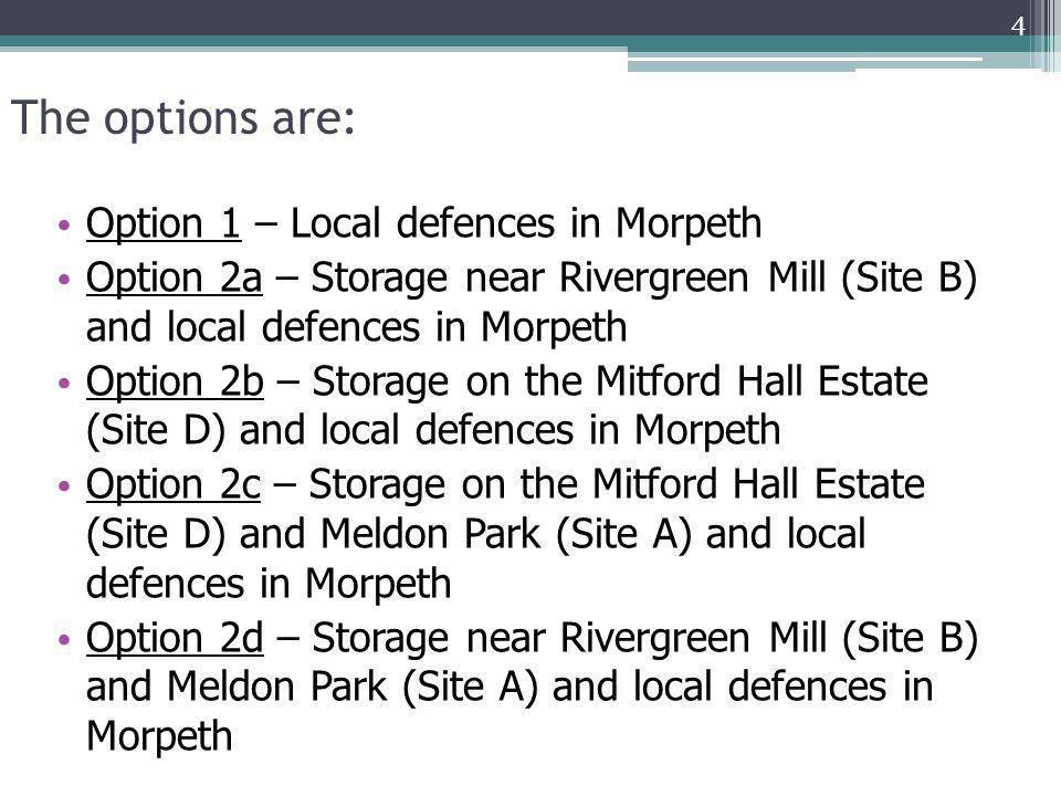 The options are: Option 1 – Local defences in Morpeth