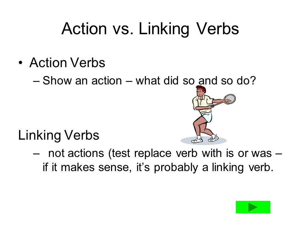 stative verb and action verb