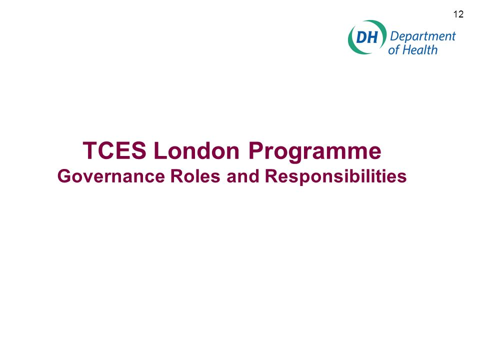 TCES London Programme Governance Roles and Responsibilities