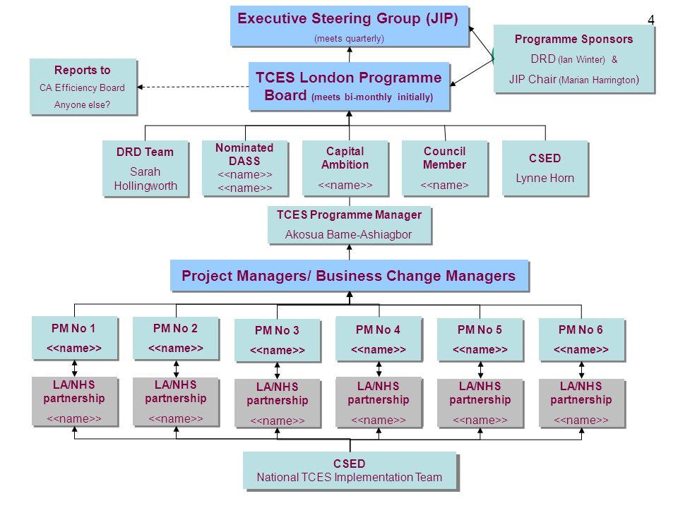 Executive Steering Group (JIP)