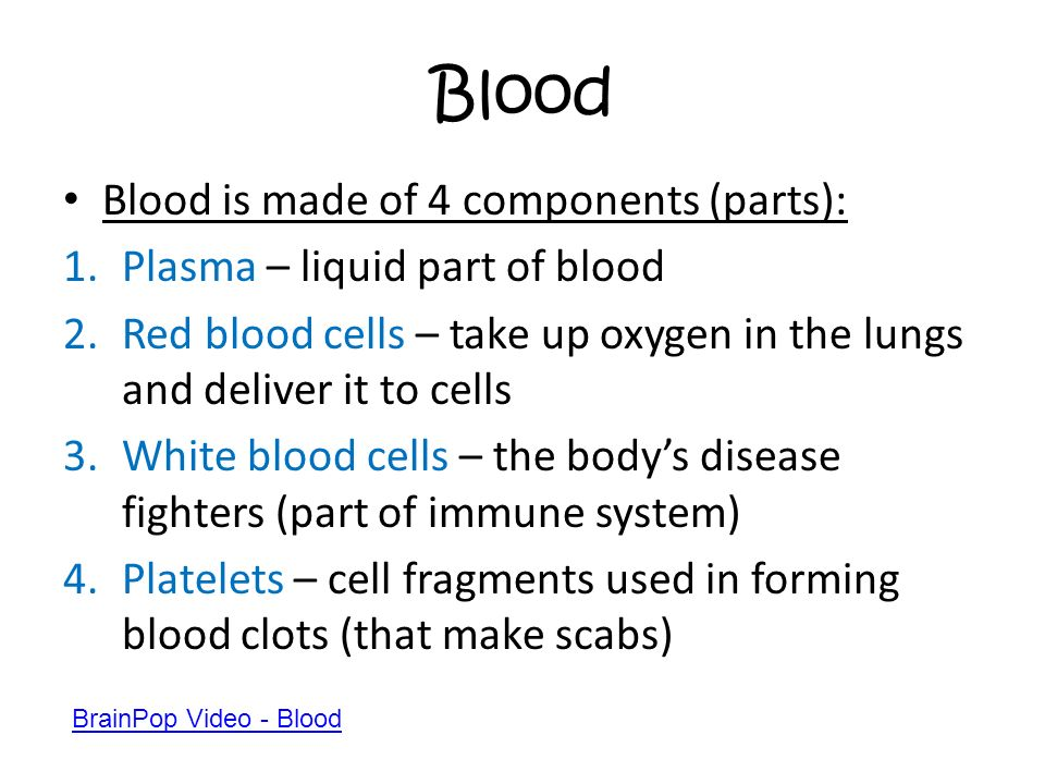 Blood Blood is made of 4 components (parts):