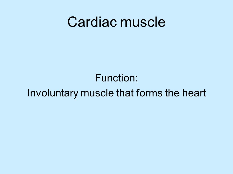 Function: Involuntary muscle that forms the heart
