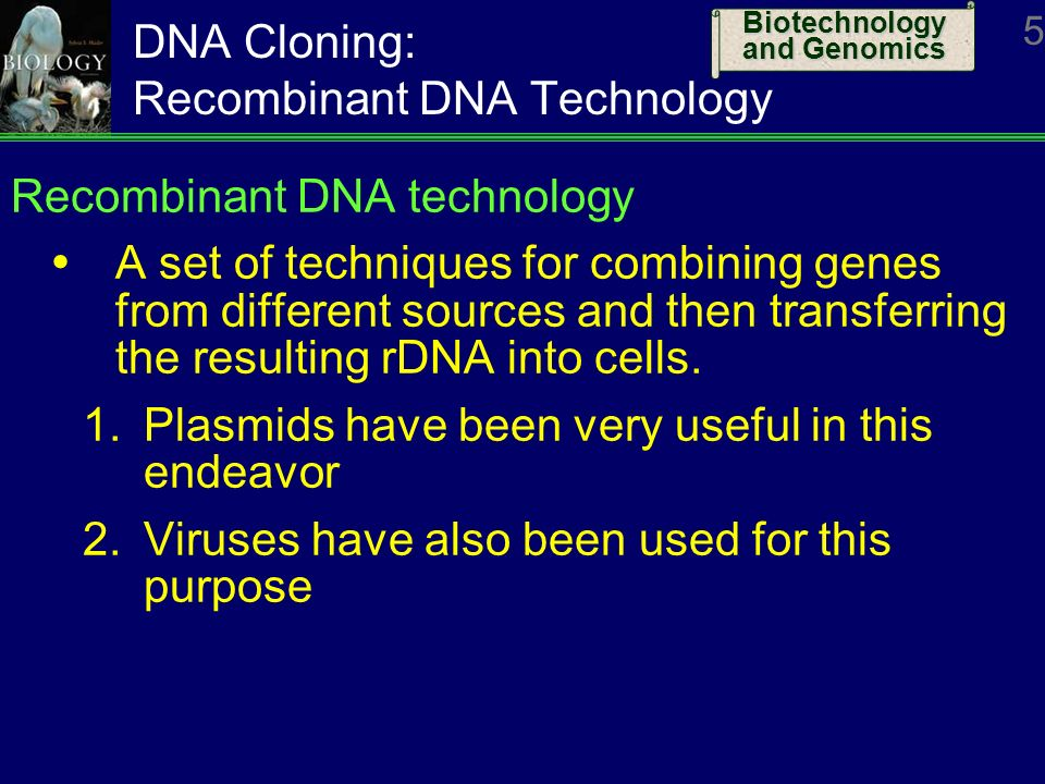 cloning technology Cloning technology has enabled breeders to develop lines of cattle, sheep, and cotton plants that respectively produce more milk, wool, and cotton cite this article.