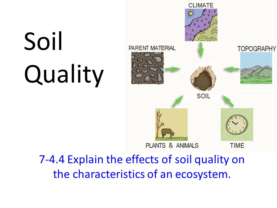 Soil quality explain the effects of soil quality on the for What are soil characteristics