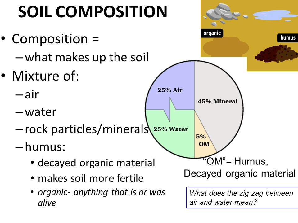 an experiment on the composition of the soil E-unit: explaining a soil profile soil composition, and drainage patterns soil scientists are called upon to provide information and recommendations to nursery.