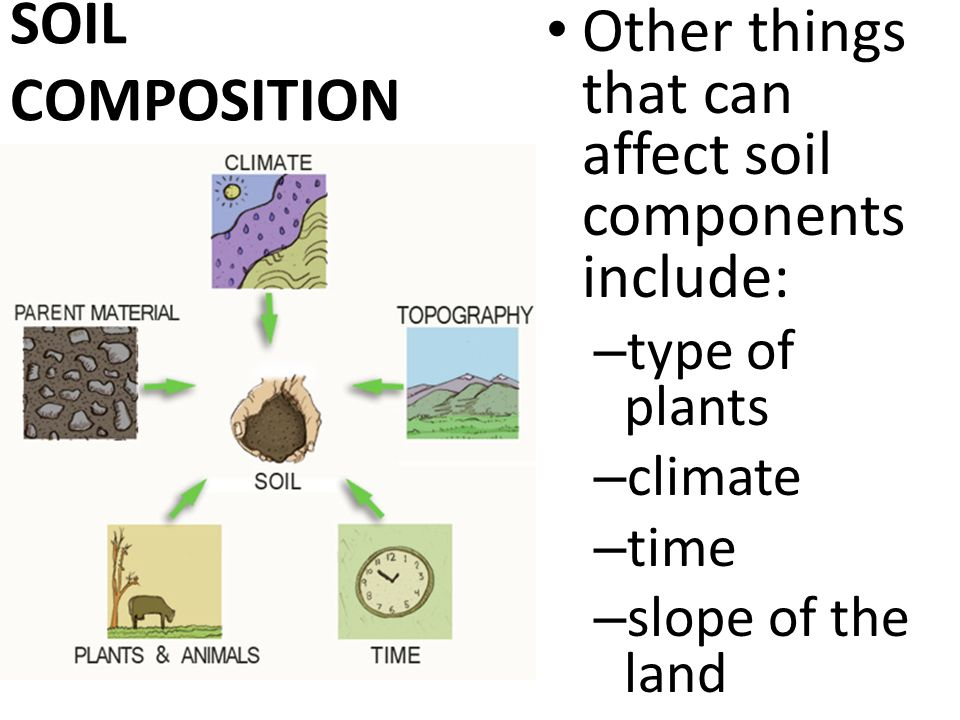 Soil quality explain the effects of soil quality on the for Things in soil