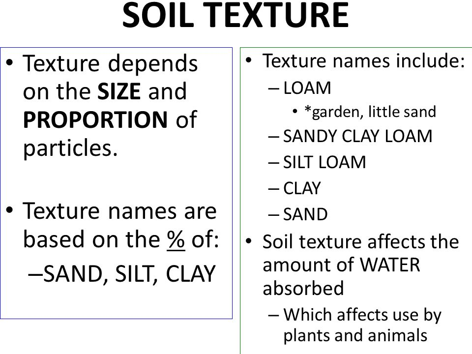 Soil quality explain the effects of soil quality on the for Size and proportion