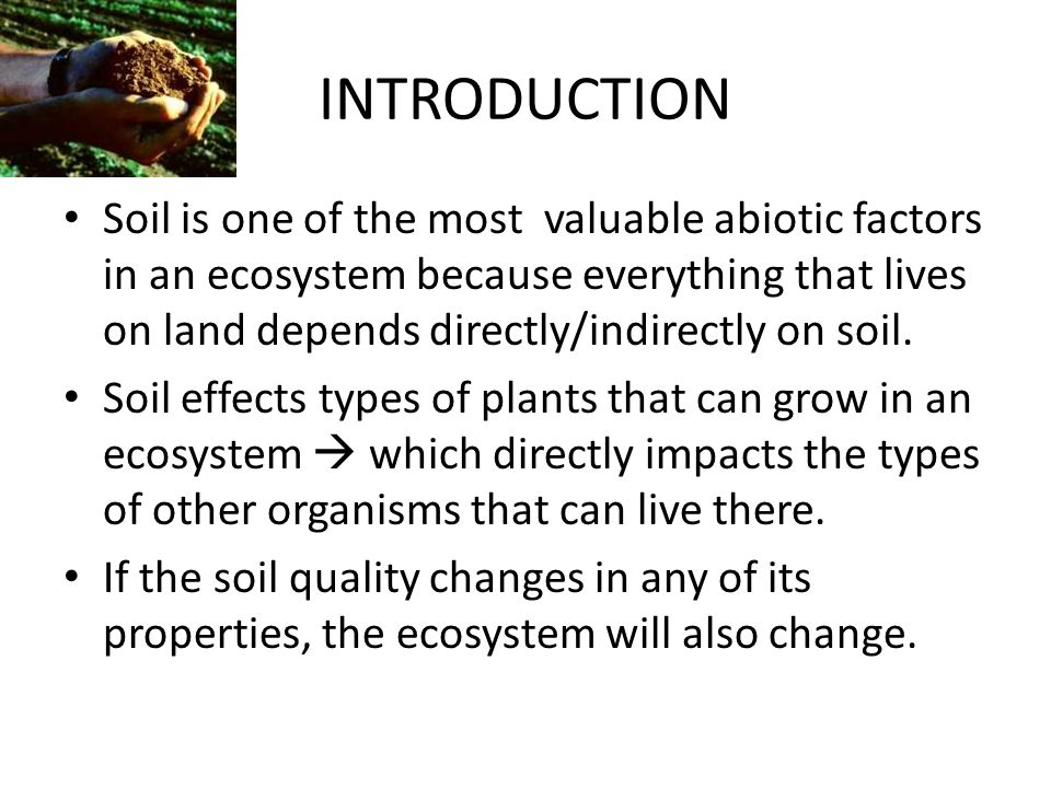 Soil quality explain the effects of soil quality on the for Introduction of soil