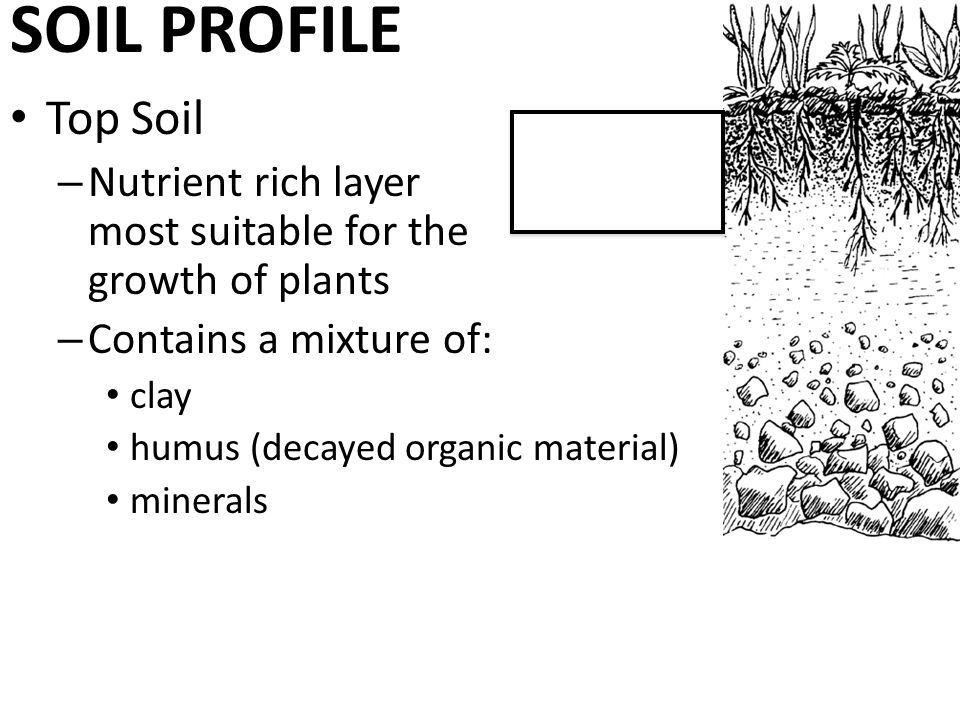 Soil quality explain the effects of soil quality on the for What is rich soil called