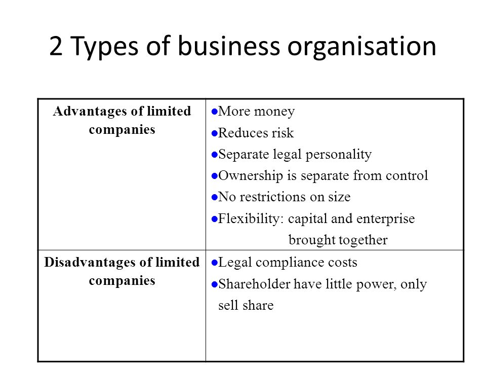 types of business organizations advantages and disadvantages pdf