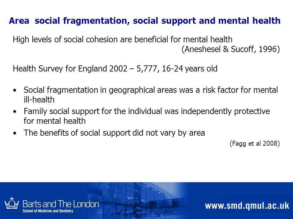 Area social fragmentation, social support and mental health