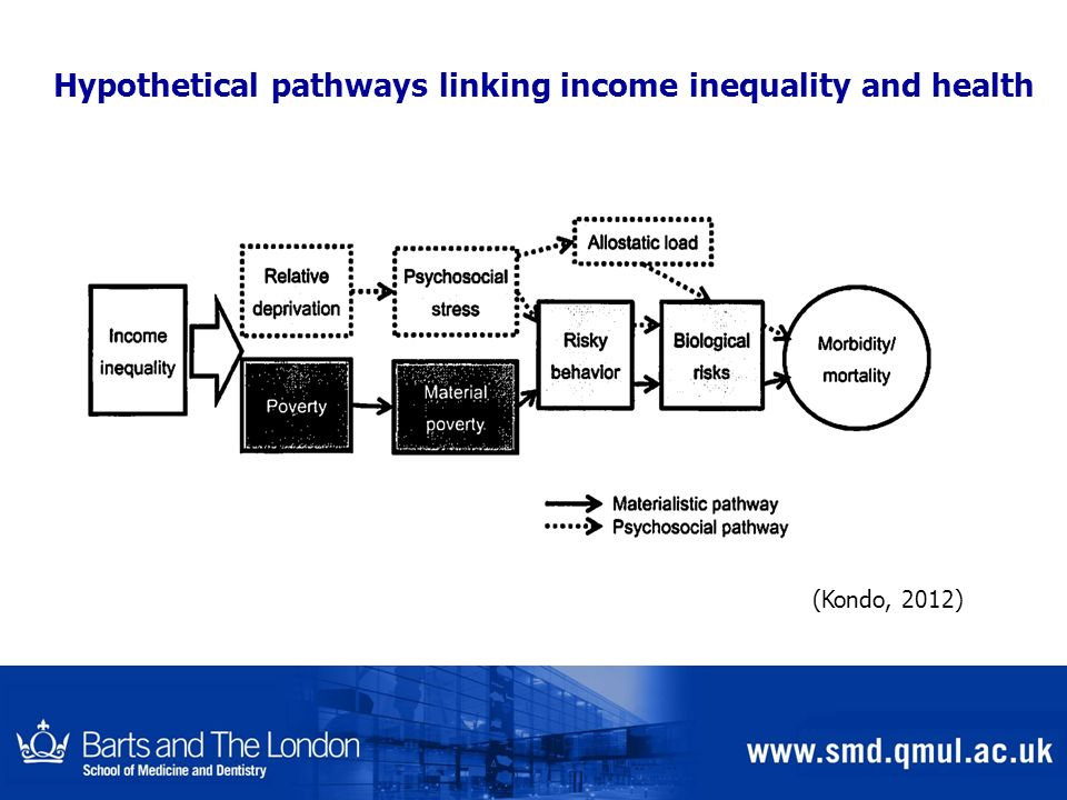 Hypothetical pathways linking income inequality and health