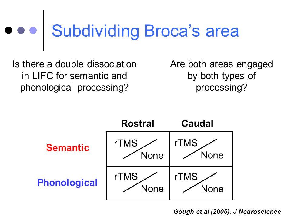 Subdividing Broca's area