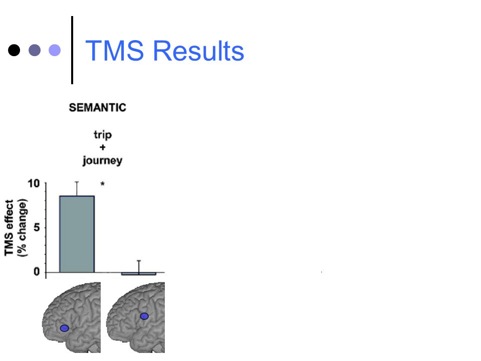 TMS Results