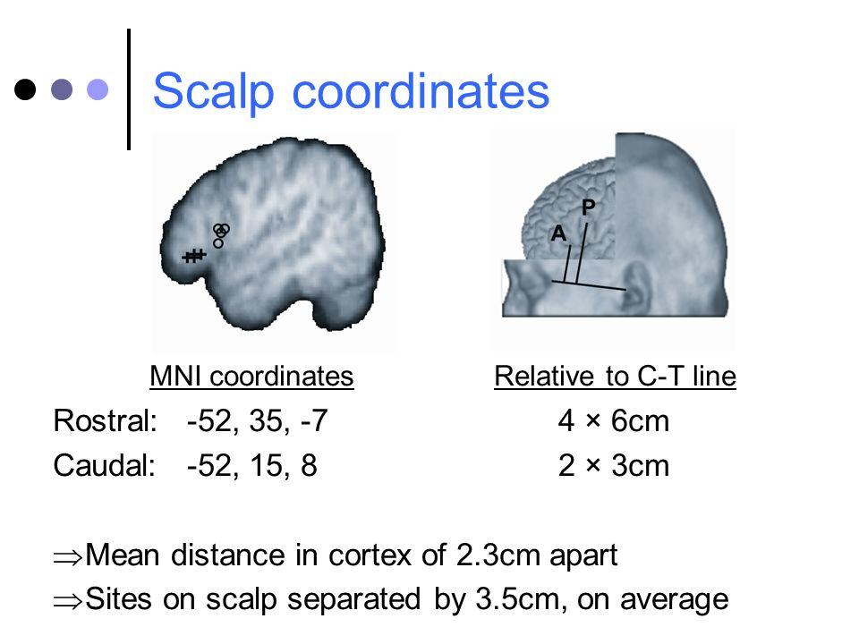 Scalp coordinates Rostral: -52, 35, -7 4 × 6cm