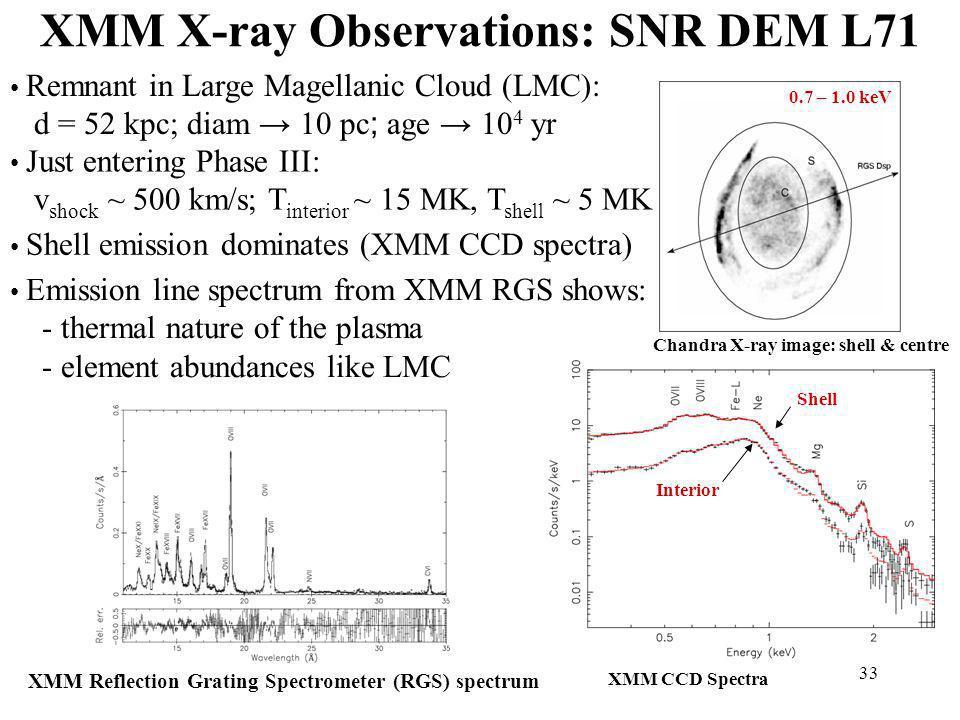 XMM X-ray Observations: SNR DEM L71