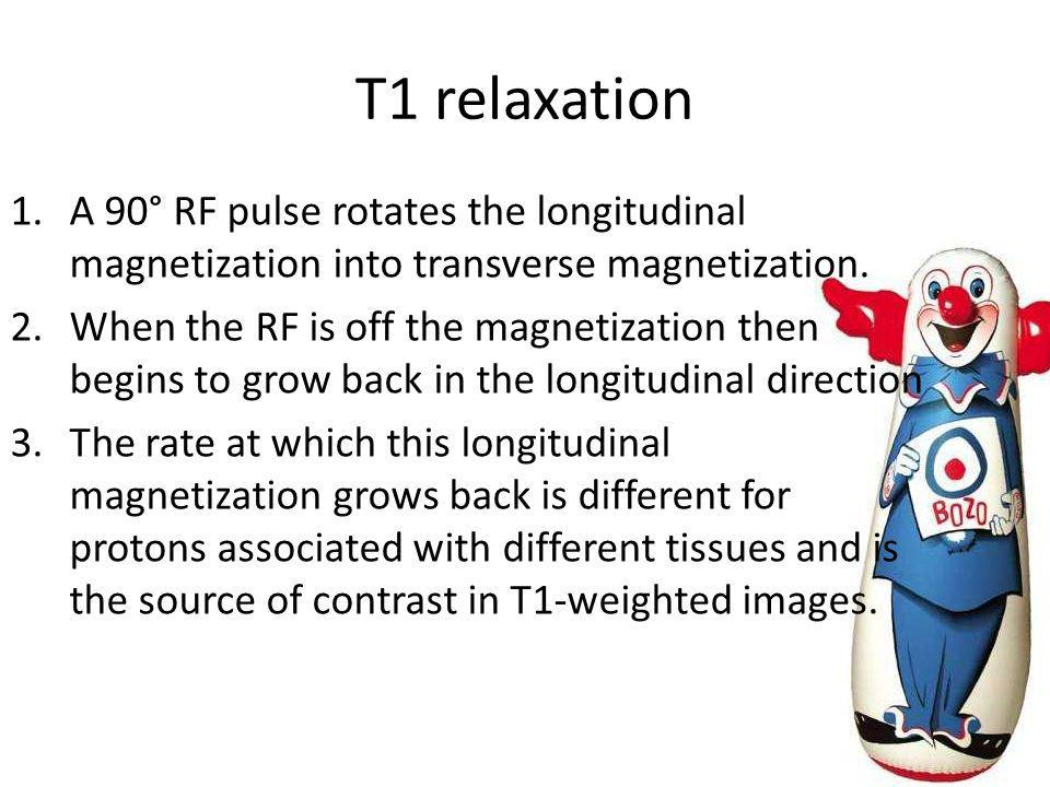 T1 relaxation A 90° RF pulse rotates the longitudinal magnetization into transverse magnetization.
