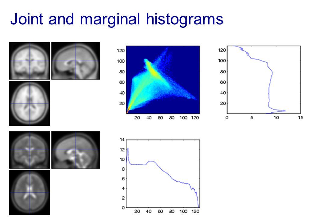 Joint and marginal histograms
